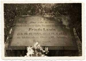 קברה של פרידה לוין, בית הקברות במוגילנו